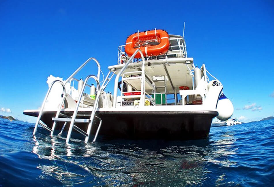 36 ft Newton Dive Boat